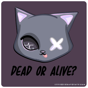 Dead or Alive Schrodinger's Cat Sticker