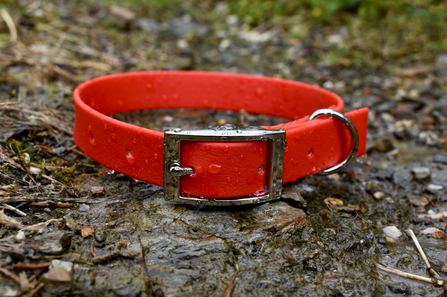 Red - Basic Collar