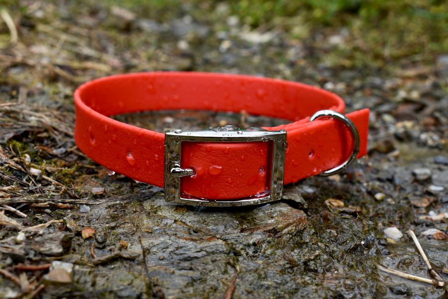 Red Basic Collar - Ready To Ship