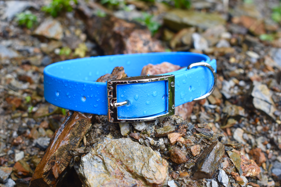 Blue - Basic Collar