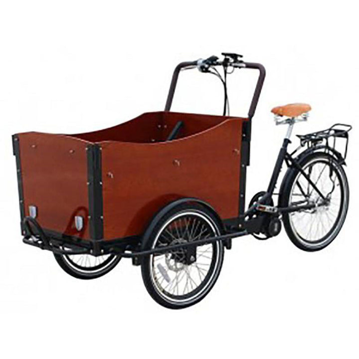 3 Wheel Cargo Bike - ELECTRIC