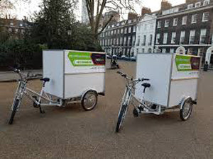 Electric Cargo Trike Food Courier