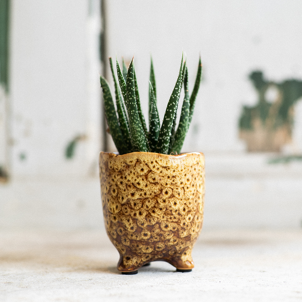 Ceramic Botanical Vase With Feet