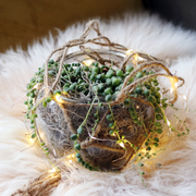 Christmas Hanging Plant Bauble