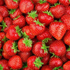 products/nectar-bath-treats-strawberry-powder-0-05oz-mix-in-mask-add-in-15820618563664.jpg