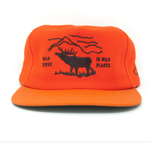 The Ampal Creative - Wild Places strapback -Safety Orange
