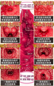 Japan NPG Eimi Fukada 012 Masturbator Sex toy for men adult toy Realistic Toy for men NPG 深田咏美 名器の证明12 真人倒模飞机杯 成人用品