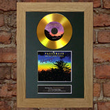 #100 GOLD DISC PASSENGER All the Little Lights Signed Autograph Mounted Repro A4
