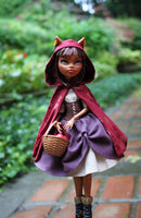 Riding Hood Fantasy Costume