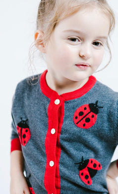 Lady Bug sweater in grey