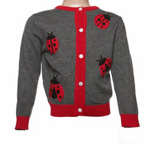 Load image into Gallery viewer, Lady Bug sweater in grey