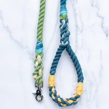 Load image into Gallery viewer, Custom Leash with Braided Handle