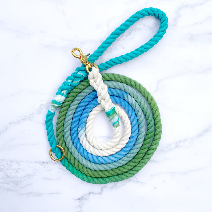 Custom Ombre Leash