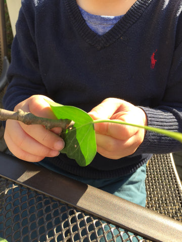 Fine motor skills threading leaves