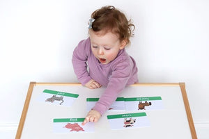 Farm Animal Flashcards | Transport Flashcards For Baby & Toddler - My Little Learner