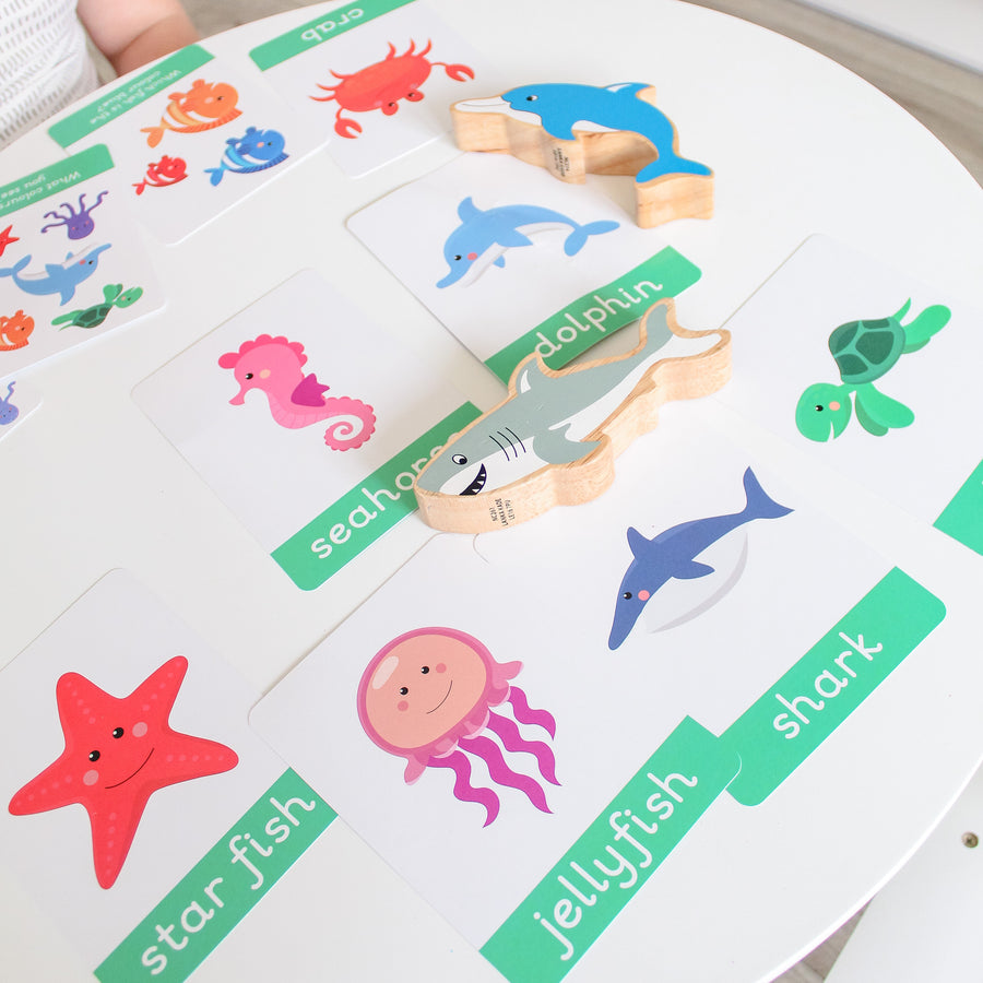 Under The Sea Flashcards
