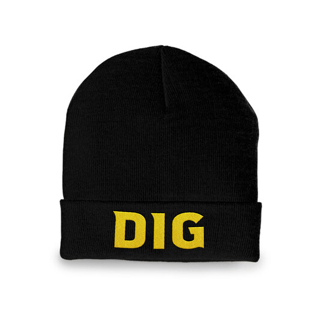DIG Lettered Beanie