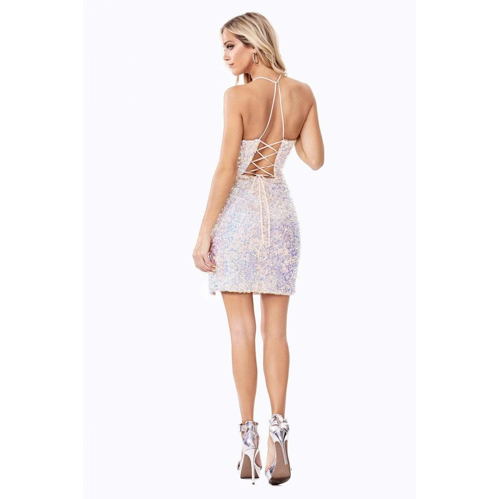 NorasBridalBoutiqueNY Cocktail Dress Confetti Mini Dress from NorasBridalBoutiqueNY