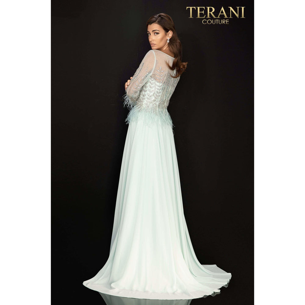 Terani Couture mother of bride dress Long sleeve feather accented Mother of Bride gown with airy Chiffon skirt – 2011M2163