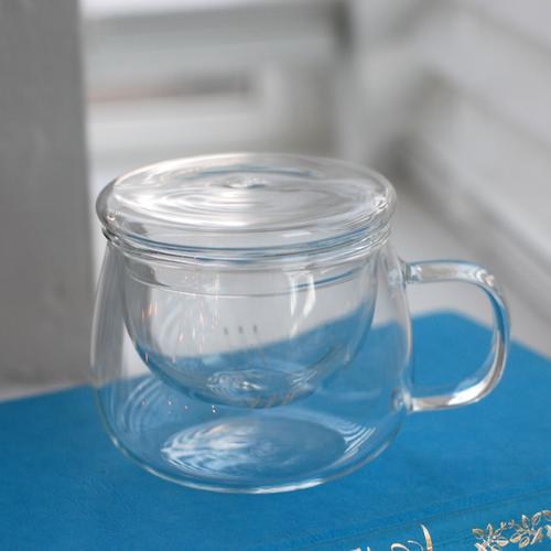 Glass Mug with Infuser and Lid