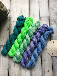 Sock Yarn Mini Set - Color of Life