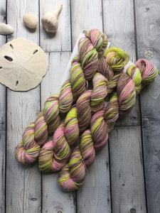 20g Sock Yarn Mini Skein - Beauchamp Versailles
