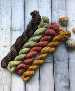 fall mini skein set