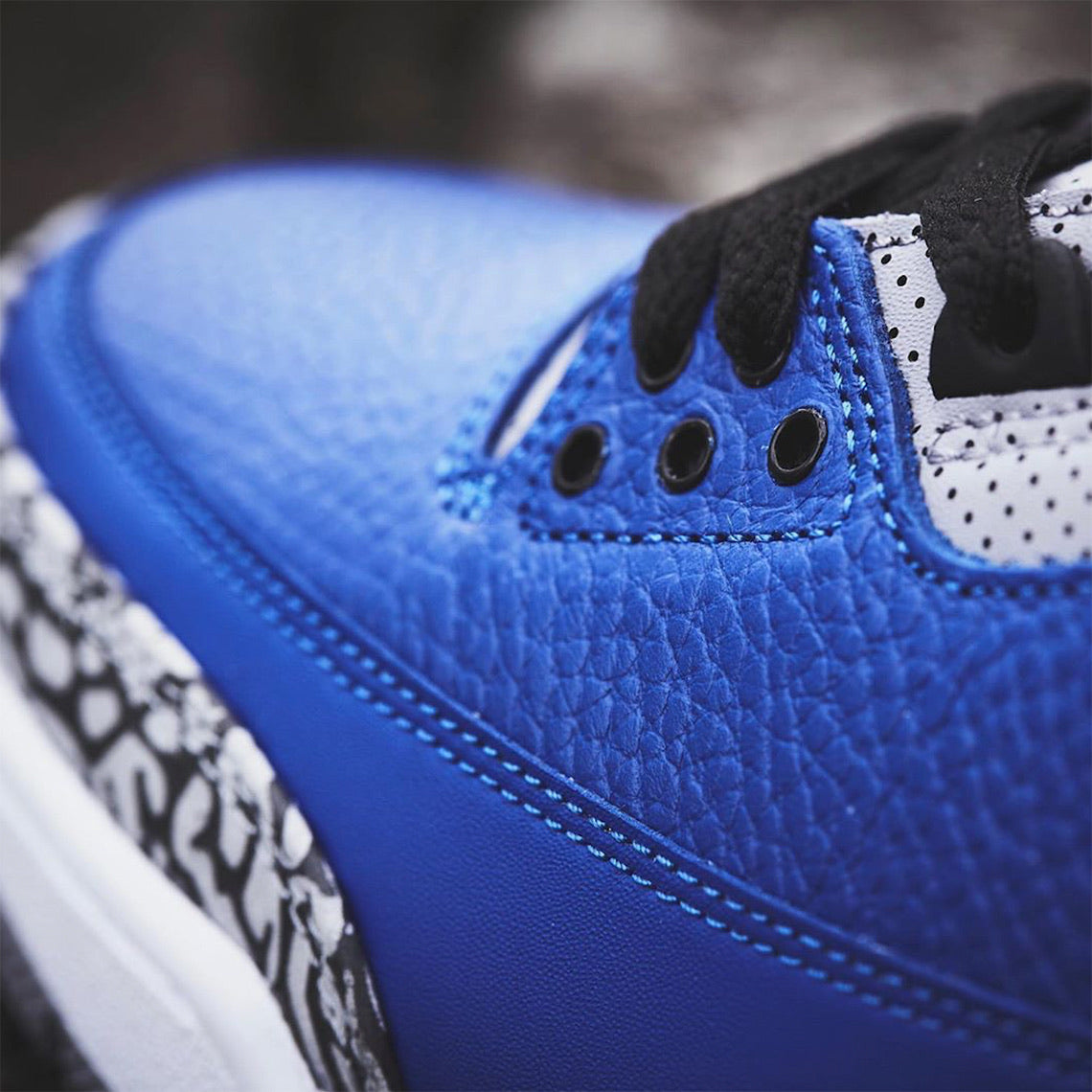 Gator 3 Royal Blue