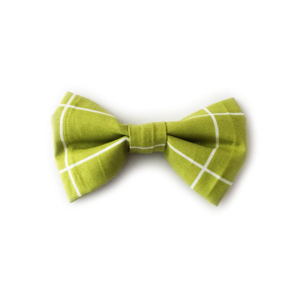 Bows in Green Square