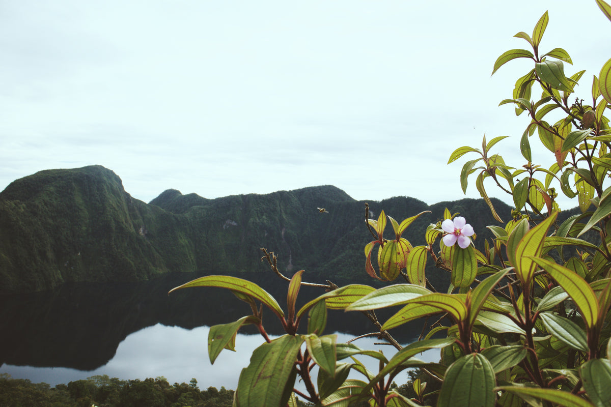 Visit: Mt. Melibengoy & Lake Holon