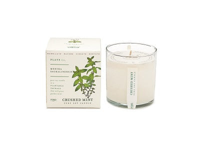 Kobo Candles Crushed Mint Candle