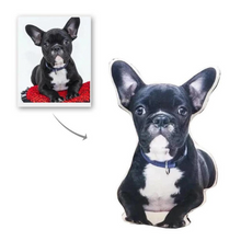 Load image into Gallery viewer, Personalized Dog Cat Photo Pillow