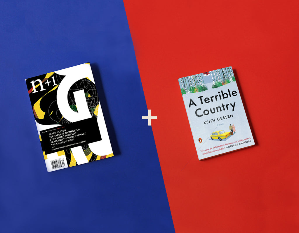 <em>A Terrible Country</em> + Gift Subscription Summer Sale