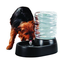 Load image into Gallery viewer, Dog & Cat Water Fountain 62 Oz Automatic Pet Fountain Dog Water Dispenser Black