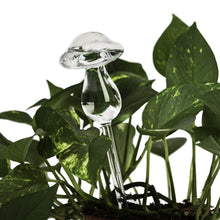 Load image into Gallery viewer, Clear Aqua Globes Plant Watering Glass Bulbs - Bird Snail Mushroom Owl Design