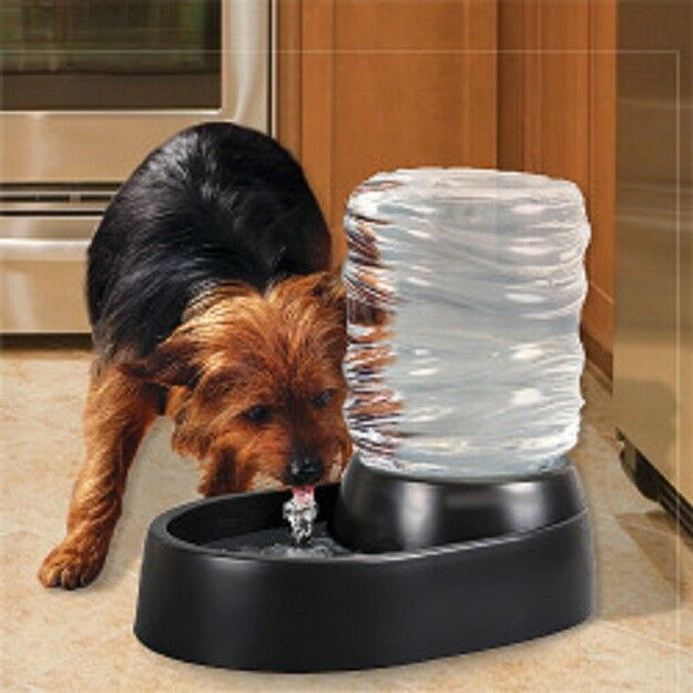 Dog & Cat Water Fountain 62 Oz Automatic Pet Fountain Dog Water Dispenser Black