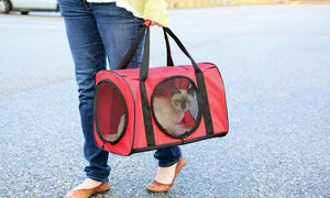 Red Large Cat Carrier Travel Bag W/ Tunnel - Soft Pet Carrier For Dog Kitty Cat