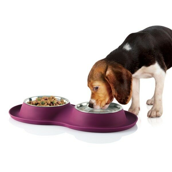 Pet Stainless Steel Food Water Bowl With Non-Slip Silicone Base - Dog Food Bowls