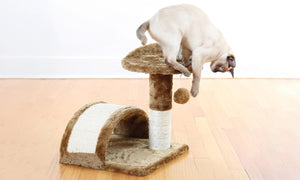 Cat Scratching Pole & Play Center - Kitty Perch & Tunnel - Pet Furniture