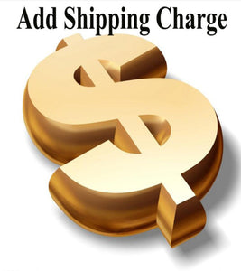 Shipping Charge - Bayson R Motorsports
