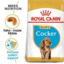 Royal Canin Breed Health Nutrition Cocker Junior 3 Kg
