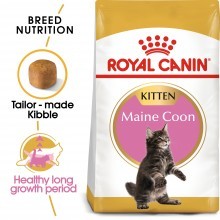 Royal Canin Feline Breed Nutrition Kitten Maine Coon