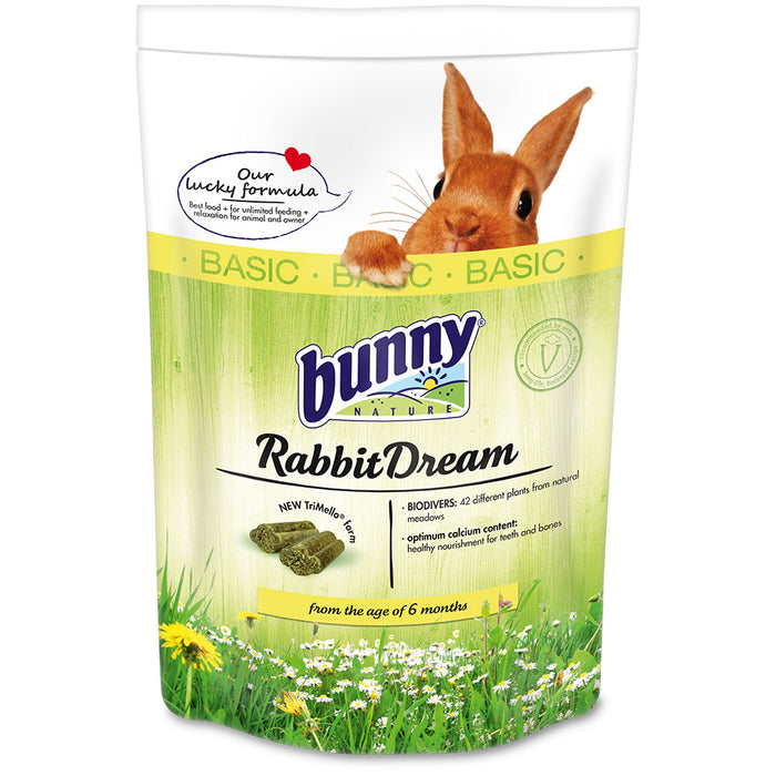 Bunny Rabbit Dream Basic Dream