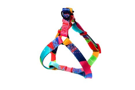 Pickles Rainbow Dreams Harness