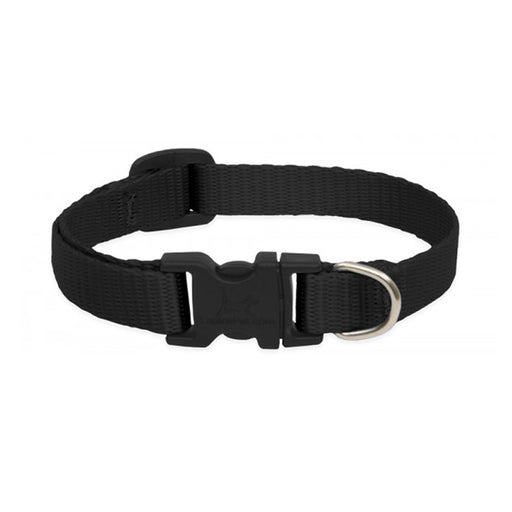 Cat Collar Black 1/2'' Basic