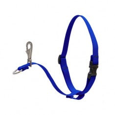 1'' No Pull Harness Blue 26-38
