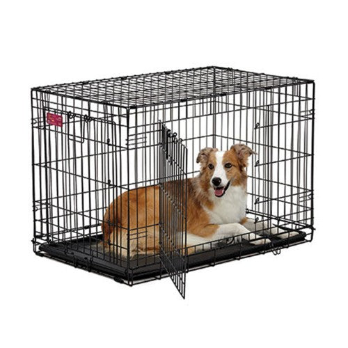Crate Lifestages Double Door 36''