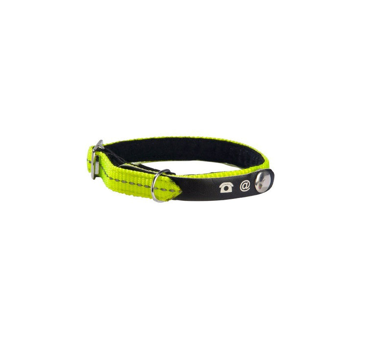 Bobby Lost Cat Collar - Yellow
