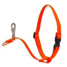 1'' No Pull Harness Orange 26-38