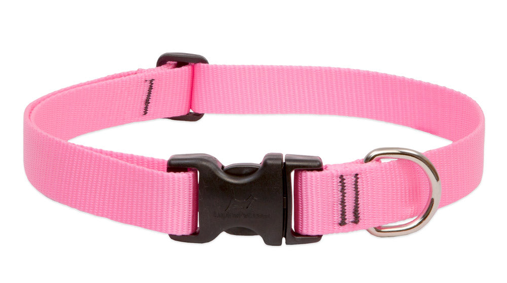 PINK Collar - 1/2 Inch - 6-9 inches long